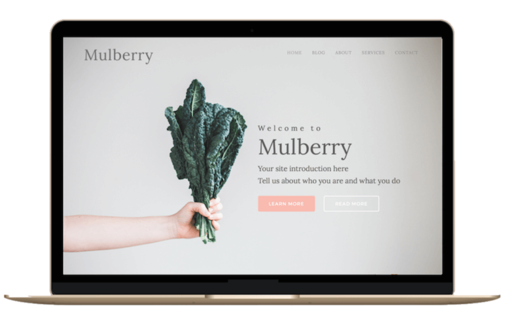 Purchase Mulberry Upgraded